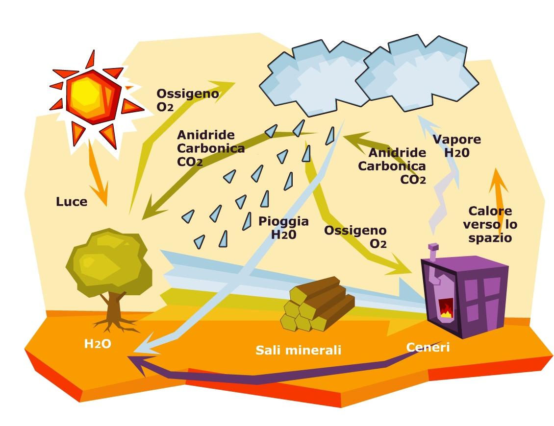 Il Mse destina 100 milioni per le filiere biomasse nelle regioni Convergenza